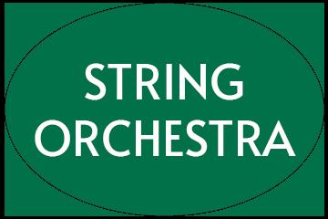 String Orchestra